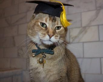 ce6d998092bc9 Graduation Cap Cat Hat for your cat FREE SHIPPING! Add-on custom Tassel--