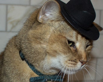 39b060444dc1a Black Cowboy Cat Hat FREE SHIPPING