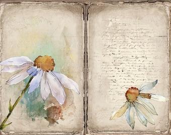 Vintage Daisy Journal Kit, 6 Digital Junk Journal Pages, 11 x 8.5, Printable Journal Ephemera, Paper Craft