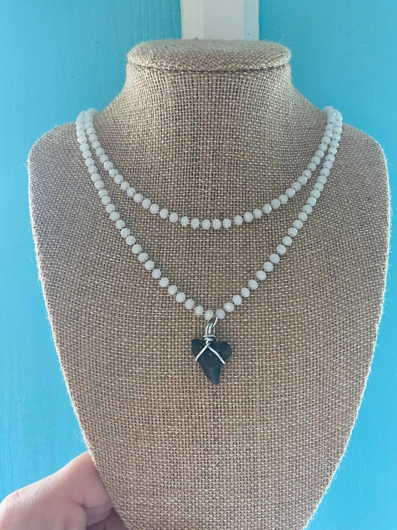 Real  Authentic Shark Tooth Necklace