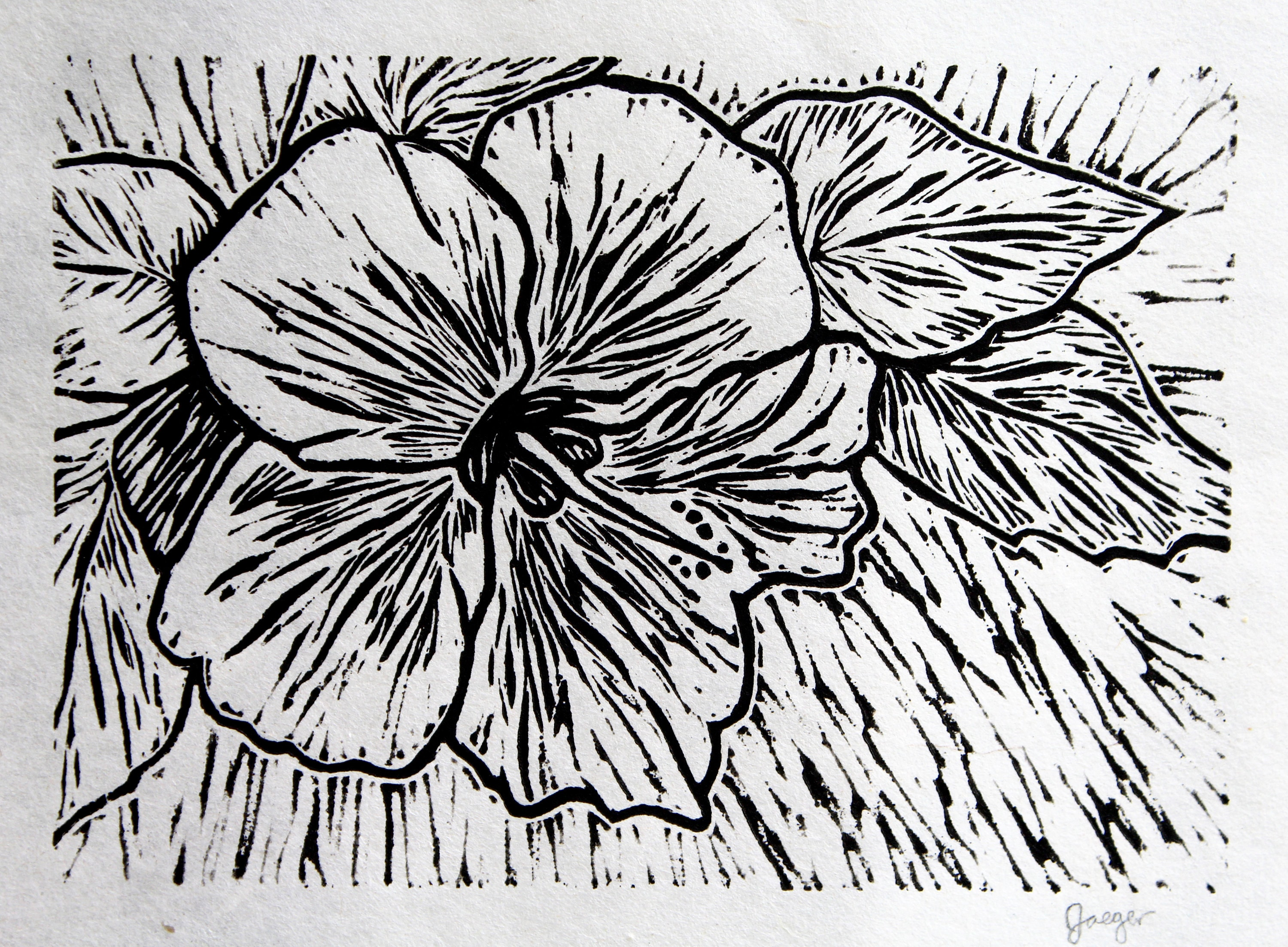 Hibiscus Flower Black And White Linocut Block Print Etsy