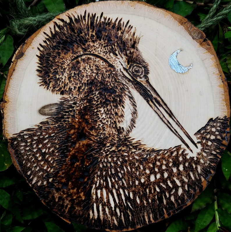 Anhinga or Snakebird wood burning double sided image 0