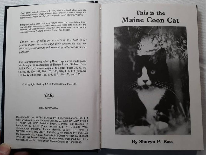 This is The Maine Coon Cat Book, Crazy Cat Lady, Cat Lover, Cat Gift,  Feline, Cat, Lover, Love, Feline Enthusiast, Color Plates, 1st Edit