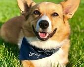 Personalized Hand Embroidered Dog Bandana, Custom Pet Clothing, Gift for Dog Lover, Photoshoot, Puppy Bandana, Paisley Bandana, Dog Name