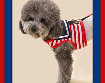 Sailor Pet Harness & Leash