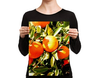 Oranges Print-Oranges Wall Art-Oranges Decor-Oranges-Art and Collectibles-Prints-Cheerful Sunny Oranges Canvas Wall Art-P & C Designs Co