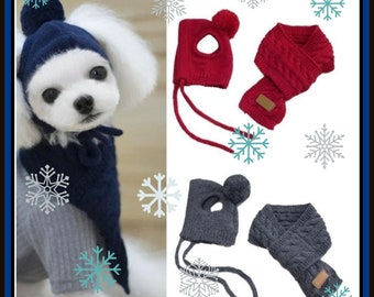 Adorable Small Dog Hat and Scarf