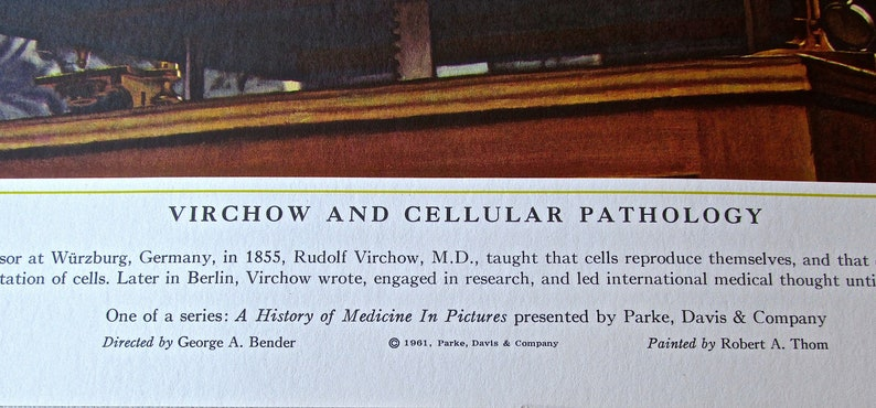 Vintage Medical Art-Virchow and Cellular Pathology 16 12 x 13 12 Offset Lithograph