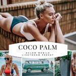 COCO PALM AGLOW Mobile Lightroom Preset / Blogger and Instagram Preset to Enhance photos / Adobe Lightroom Mobile / Best Presets