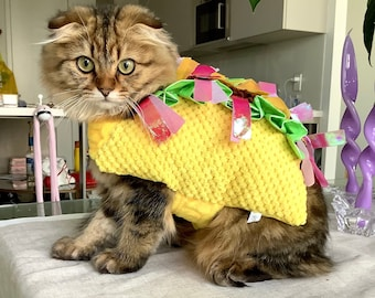 Taco Halloween Pet Costume for Cats snd Dogs | Velcro Straps | Fall Halloween Outfit