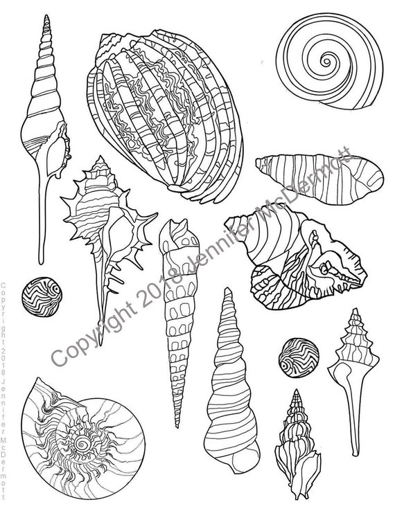 Under The Sea Coloring Pages | Beach coloring pages, Animal ... | 738x570