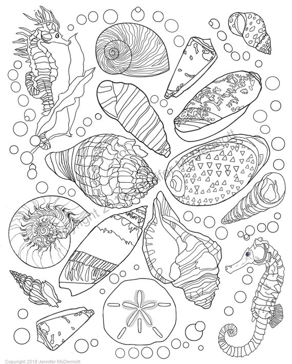Coloring page: Two seahorses flank 14 seashells floating