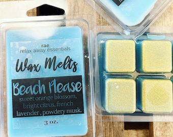 Clamshells Indie Wax Melts Ocean Scent Candle Melts Glitter Wax Melts Hand Poured Wax Summer Fragrance Wax Tarts Mermaid Wax Melts