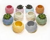 Succulent pots Concrete planter Geometric sphere Stone planter Cement planter Flower pot stand Cactus pot Airplant holder Concrete vase