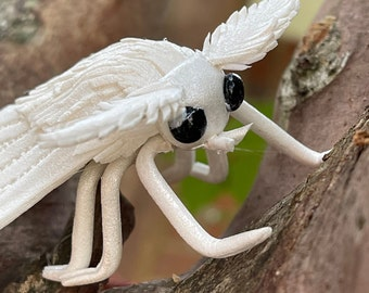 Colby Timms Wire and Foam Moth