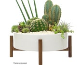 Mid Century Ceramic Planter Bowl with Acacia Wood Stand - Extra Large with Drainage and Plug - Round Succulent Planter Large - 10 Inch White