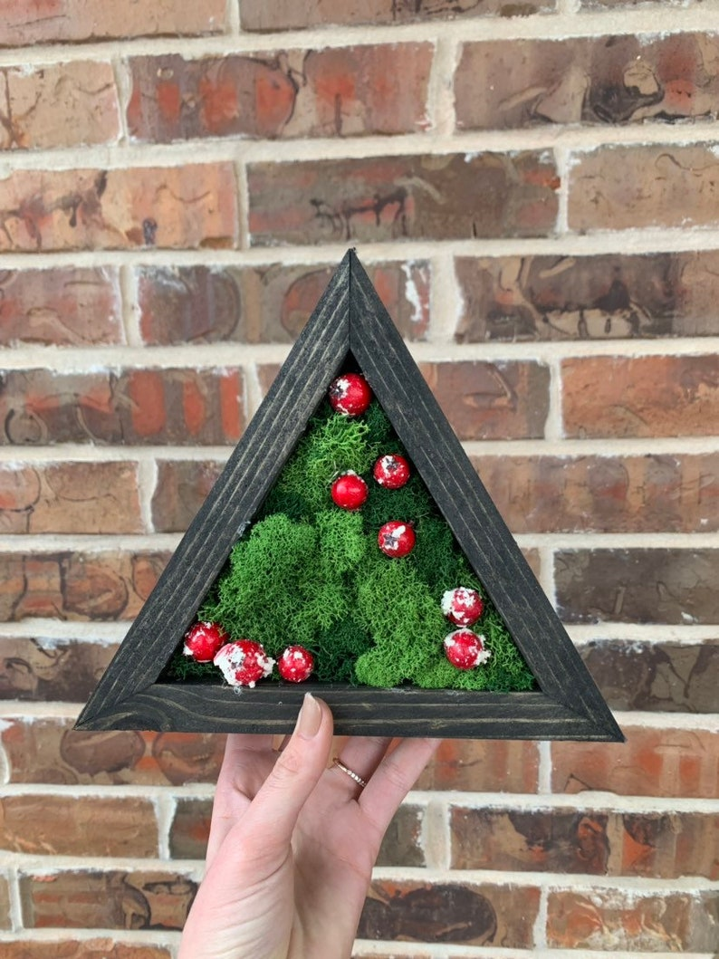 Preserved plant art Cranberries Moss Wall Plant wall decor Moss wall art Green wall art Plant art Preserved moss
