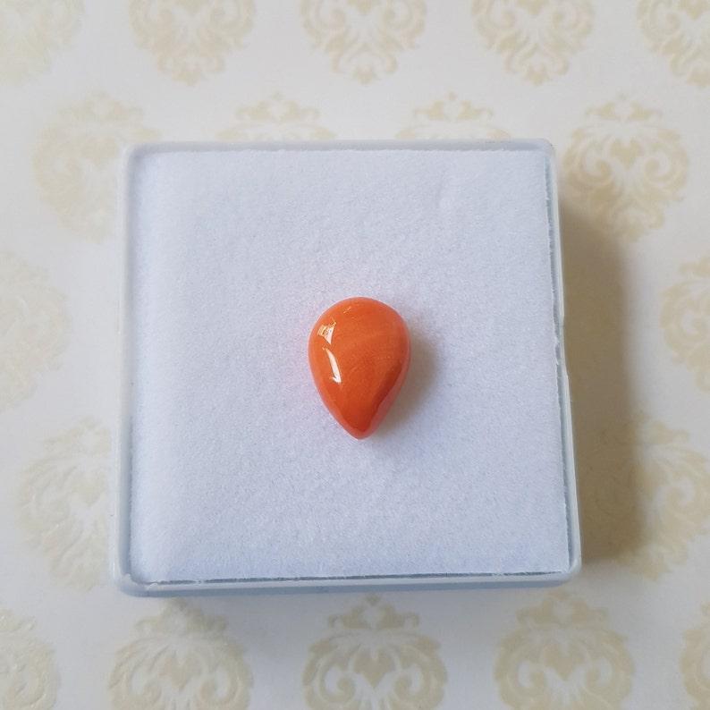 100/%Natural Italian coral shape pear 12X9X5mm Mediterranean Coral Gemston Cabochon