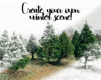 Winterize ACTIONS and TUTORIAL: Transform to Winter Snowy Scene - Digital Photoshop Action Pack & FREE Snowflake Overlay