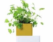 UNO_Amber: The best self-watering terracotta pot for indoor growing of healing herbs