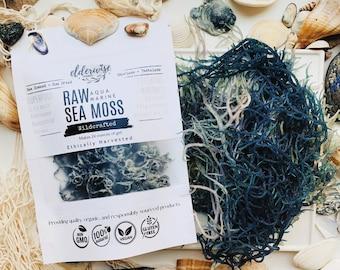 Sea Moss | AQUA MARINE | Raw + Non GMO | Sundried | Wildcrafted | Makes 24 Ounces of Gel