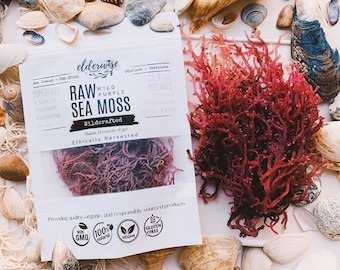 Sea Moss | PURPLE | Raw + Non GMO | Sundried | WILDCRAFTED | Mineral Rich | Makes 24 Ounces of Gel