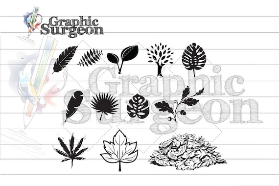 Diy Leaves Trees Collection Svg Set Flat Lay Clipart Etsy