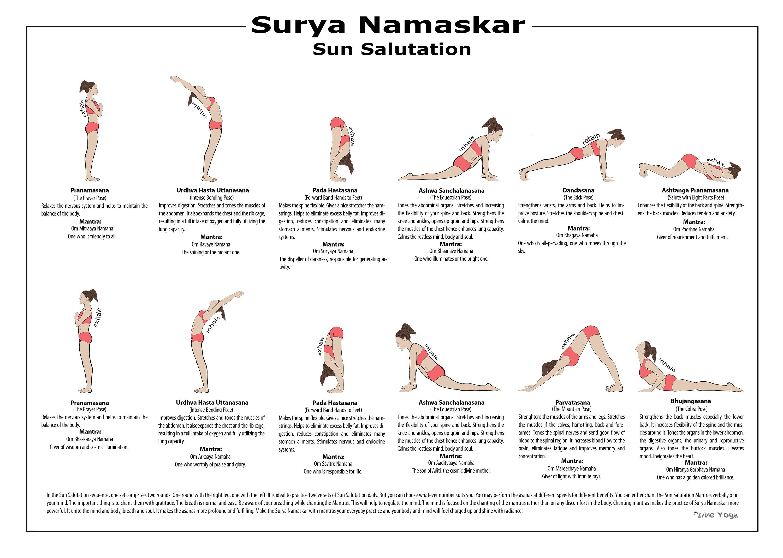 594x420 mm Surya Namaskar Sequence Sun - Salutation educational poster -  Hatha yoga - Printable poster
