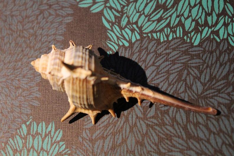 Hair clip silver shell long beach summer mermaid cute enchanted playful charm gift