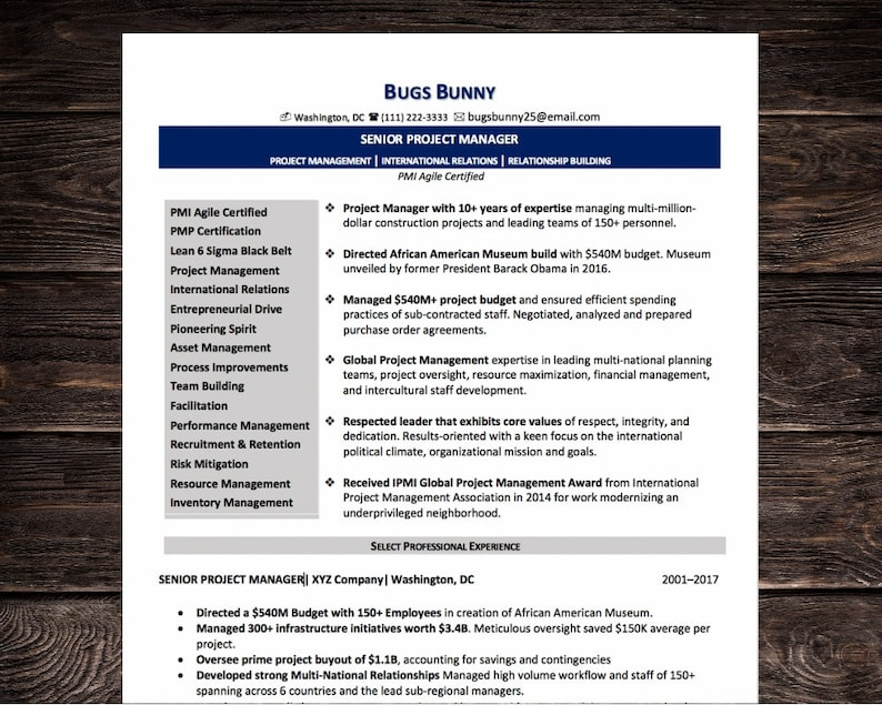 Senior Project Manager Resume CV Template Microsoft Word