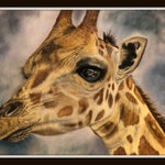 "Original Hand-Painted Giraffe Fine Art print 8.5""x11"", gift, pastel painting, African giraffe, gift"