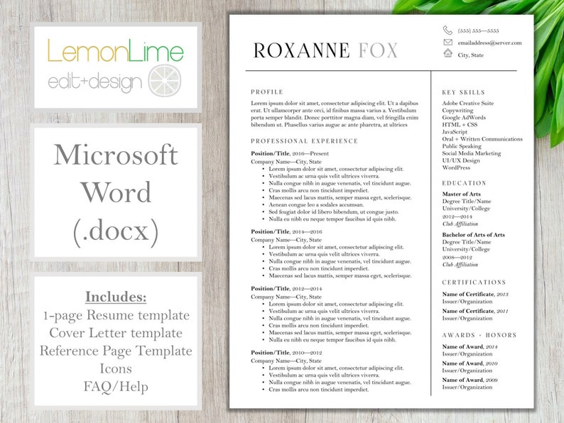 Resume Template For Word Single Page Traditional Modern