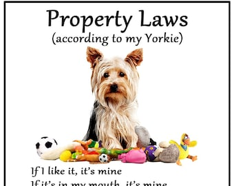 YORKSHIRE TERRIER Property Laws Magnet Personalized With Your Dog/'s Name