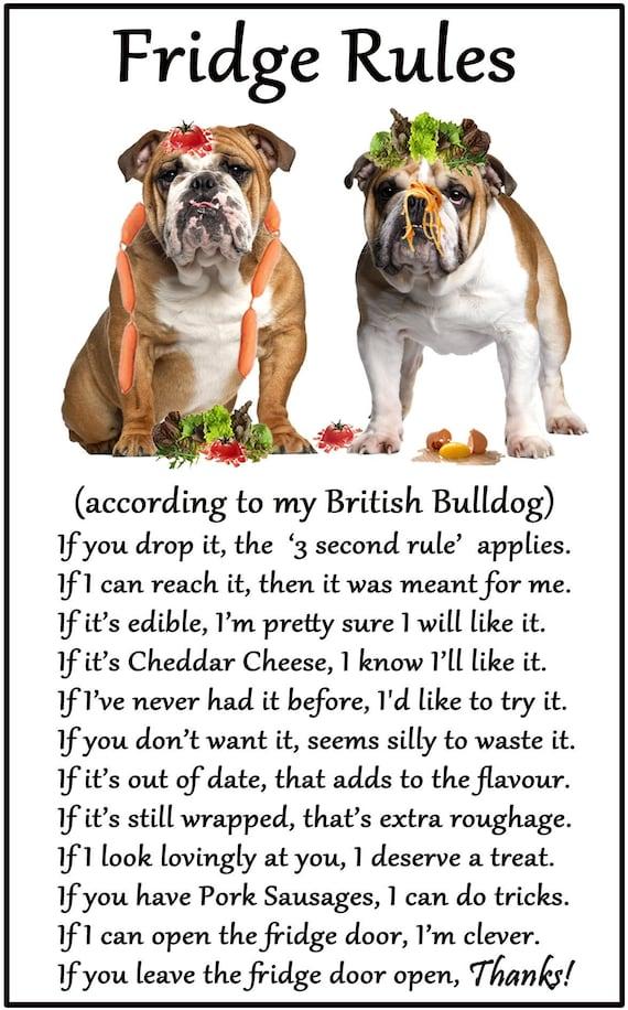 ENGLISH BULLDOG Property Laws FRIDGE MAGNET No 3 DOG