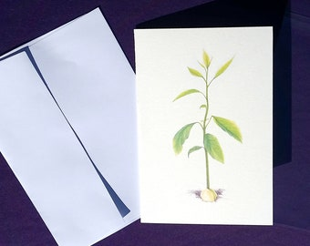 Patience: A Study by Angela Durst - Fine Art Card - Greeting Card - Water Color Pencil - Print