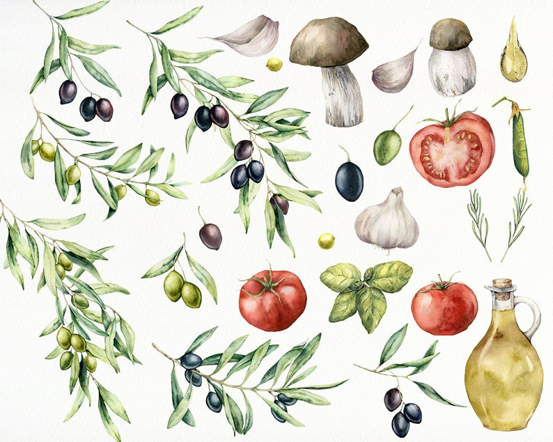 Italian greek food clipart PNG Olive branch leaves olive oil garlic tomato basil mushrooms clipart Watercolor Mediterranean food clipart