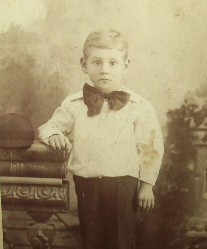 Ca 1880s Cabinet Card Photo Boy With Large Dog Old Antique Vtg Photograph
