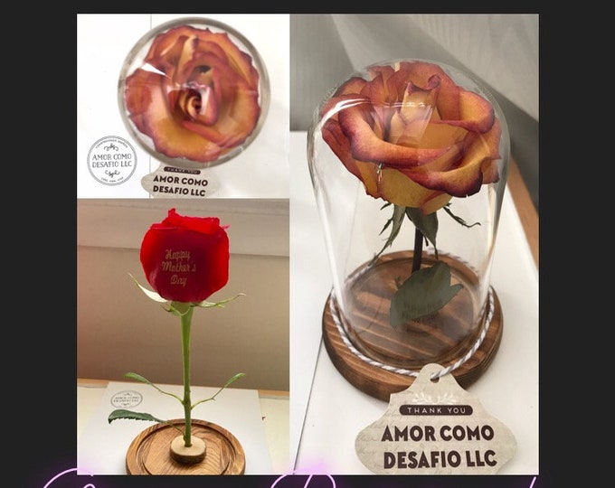 Organic Preserved Personalized Rose in Small Glass Case