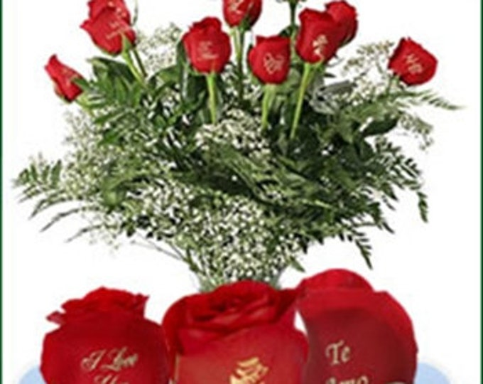 12 Red Roses - I love you in 12 languages