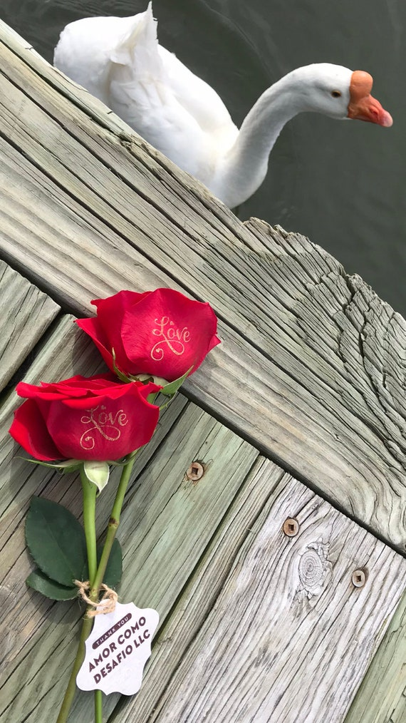 Red Personalized Roses