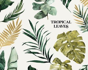 Tropical Leaves Etsy Design great graphics about tropical vacation centers, spring break, beach and more with this set of tropical leafs and decorate your project, shop or publication. tropical leaves etsy