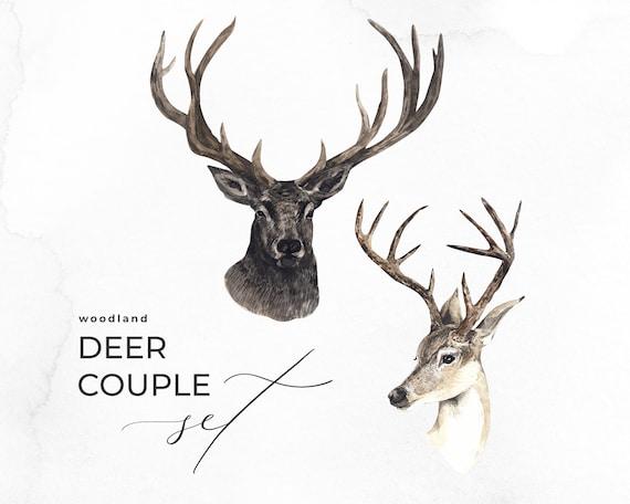 Deers wedding invitations watercolor