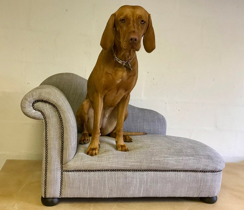 The Chaise Luxury Dog bed image 0