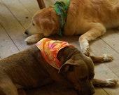 Tie dye dog bandanas, beaded dog bandanas, swirl dog bandanas, boho dog bandanas, hippie dog bandana, boho dog bandana, artsy dog bandana