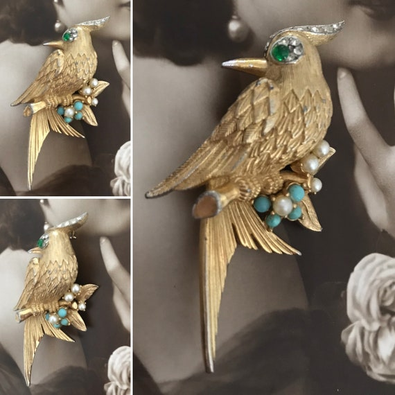 Boucher Brooch, Bird of Paradise Brooch, Designer