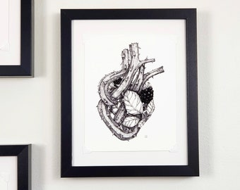 Anatomical heart print with blackberries, gallery wall art, maximalist decor, cottagecore art | Flora and Fauna Collection #1