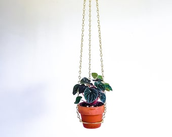 """Small brass hanging planter, indoor wall planter, metal plant hanger indoor, plant mom gift 