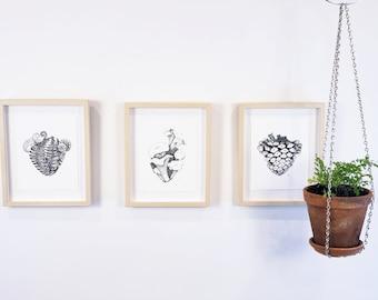 3 piece wall art, botanical prints, heart anatomy, forest nature decor, vintage wall art | Northwest Woodland Collection