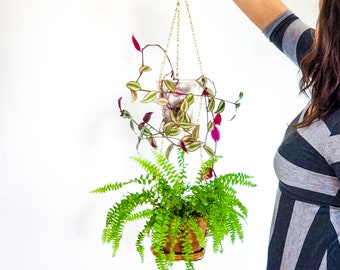 """Double window planter, brass hanging wall planter, chain macrame plant hanger, mid-century planter 