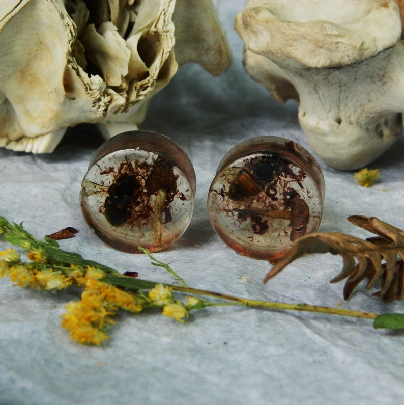 20mm Mushrooms and Bees Plugs